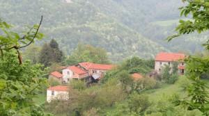 3 landelijke woningen geschikt voor agriturismo