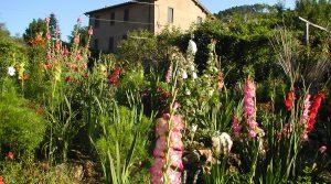 Een verborgen parel in het glooiende heuvellandschap van Lucca