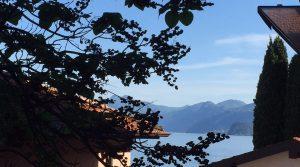 Lake-vieuw_3044