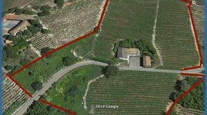 Boerderij met wijngaarden in de Monferrato – Langhe.