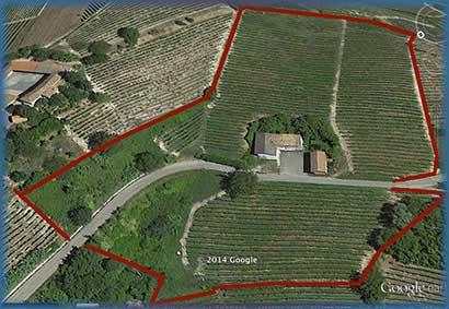 wijn boerderij met wijngaarden piemonte