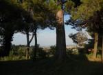 Fano Le Marche villa met zeezicht te koop 4