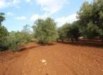 Ostuni Puglia te renoveren trulli te koop 11