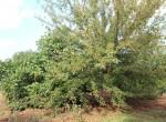 Ostuni Puglia te renoveren trulli te koop 30