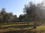 Puglia panoramische villa tussen Ostuni en Cisternino 15