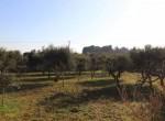 Puglia panoramische villa tussen Ostuni en Cisternino 16