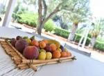 San Michele Salentino Puglia villa te koop 18