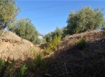 Termini Imerese Sicilie af te werken villa te koop 16