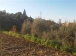 bouwgrond zeezicht te koop termini imerese sicilia 2