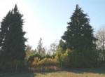 todocco alleenstaand huis met tuin te koop 15