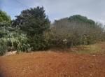 Te renoveren villa te koop in Brindisi, Puglia 5