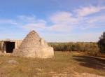 Terrein met te renoveren trulli te koop in Ostuni, Puglia 2