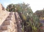Terrein met te renoveren trulli te koop in Ostuni, Puglia 6