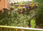 Villa Bed and Breakfast te koop in Toscane Lucca 4
