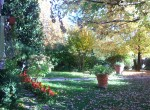 Villa Bed and Breakfast te koop in Toscane Lucca 6