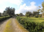 Mooi trullo complex tussen Ceglie Messapica en Martina Franca te koop 11