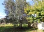 Mooi trullo complex tussen Ceglie Messapica en Martina Franca te koop 16