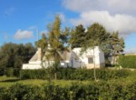 Mooi trullo complex tussen Ceglie Messapica en Martina Franca te koop 7