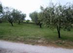 Vrijstaand huis - villa te koop Recanati Le Marche Italie 16