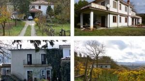 Alleenstaande villa in het hart van een natuurpark
