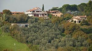 Villa met olijfgaard en wijngaard op 30 minuten van het centrum van Rome