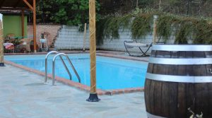 Landbouwbedrijf met zwembad te koop