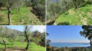 Uniek gelegen project: Aan de Riviera van Gardameer, bouwgrond + bouwplan met uitzicht op Gardameer