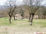 Boerderij te koop in Toscane Pieve Santo Stefano 5