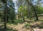 Rimini villa te koop met park en zeezicht 10