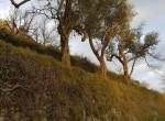 tovere amalfi ruine met terrein te koop 30
