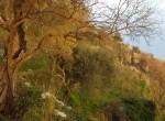 tovere amalfi ruine met terrein te koop 33