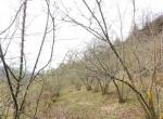 Lequio Berria Piemonte stenen huis te koop 20