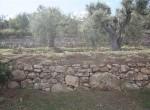 bouwgrond te koop in Termini Imerese Sicilie 8