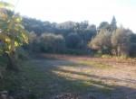 bouwgrond zeezicht te koop termini imerese sicilia 4