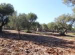 carovigno puglia bouwgrond met zeezicht te koop 10