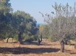 carovigno puglia bouwgrond met zeezicht te koop 14