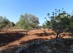 carovigno puglia bouwgrond met zeezicht te koop 19