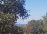 carovigno puglia bouwgrond met zeezicht te koop 2