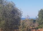 carovigno puglia bouwgrond met zeezicht te koop 20