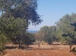 carovigno puglia bouwgrond met zeezicht te koop 6