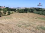 huis te koop in Fermo Le Marche 19