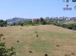huis te koop in Fermo Le Marche 22