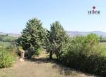huis te koop in Fermo Le Marche 24