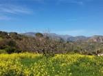 renovatieproject rustico te koop zeezicht sicilie termini imerese 15