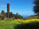 renovatieproject rustico te koop zeezicht sicilie termini imerese 8