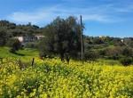 renovatieproject rustico te koop zeezicht sicilie termini imerese 9