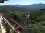 villa met olijfgaard in Perdifumo Campania te koop 7