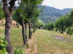 Filattiera Toscane Lunigiana vrijstaand huis te koop 13