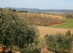 San Gimignanello, Siena, Italie - Agriturismo in Toscane te koop 22