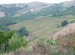Verbouwproject - Boerderij te koop in Ripatransone, Le Marche 22